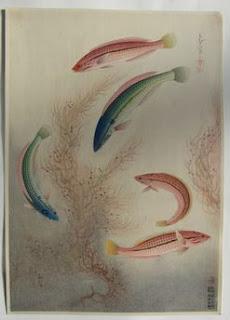 大野麦風 大日本魚類画集 ベラ の木版画販売買取ぎゃらりーおおのです。愛知県名古屋市にある木版画専門店