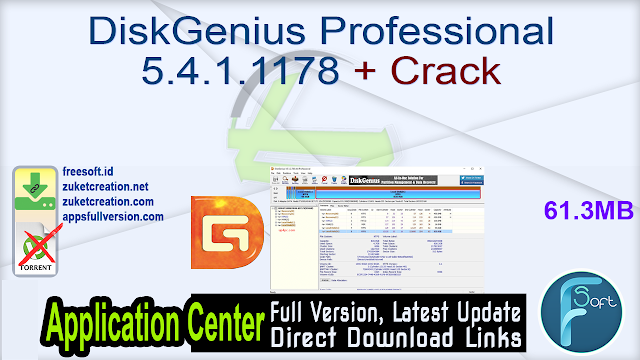 DiskGenius Professional 5.4.1.1178 + Crack