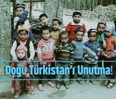 """""""Bir zulmü engelleyemiyorsanız en azından onu herkese duyurun."""" Hz. Ali (ra), türkistan, doğu türkistan, çin, zulüm, balalar, gök bayrak, türkler,"""