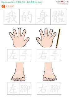 MamaLovePrint 自製工作紙 - 我的身體 幼稚園常識工作紙 My Body Worksheets Printable Freebies Activities Daily Funny Kindergarten