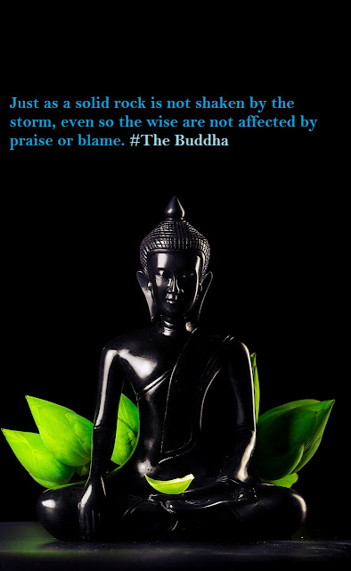 Just as a solid rock is not shaken by the storm, even so the wise are not affected by praise or blame. #The Buddha