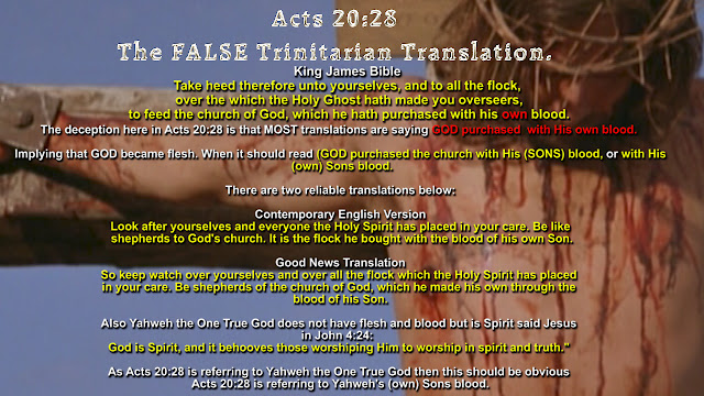Acts 20:28  The FALSE Trinitarian Translation.