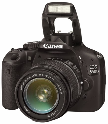 كاميرات العدسة الأحادية للمبتدئين Entry level dSLRs