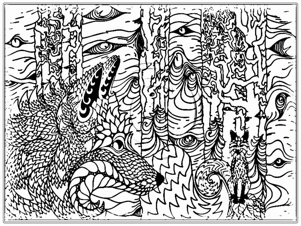 Realistic wolf adult coloring pages realistic coloring pages for Free printable wolf coloring pages
