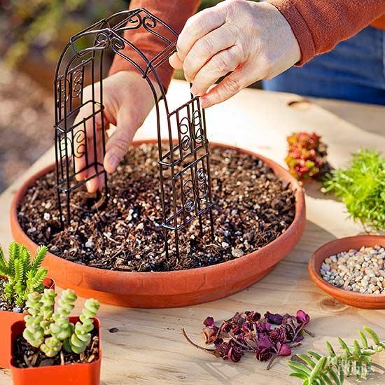 How to make a lovely miniature succulent garden