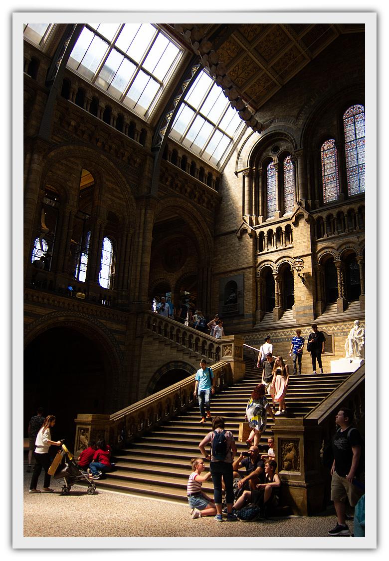 Escaleras de acceso a la segunda planta del Museo de Historia Natural