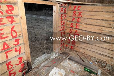 Налибокская пуща. Заброшенный хутор у Шубина. Промаркированные бревна сруба