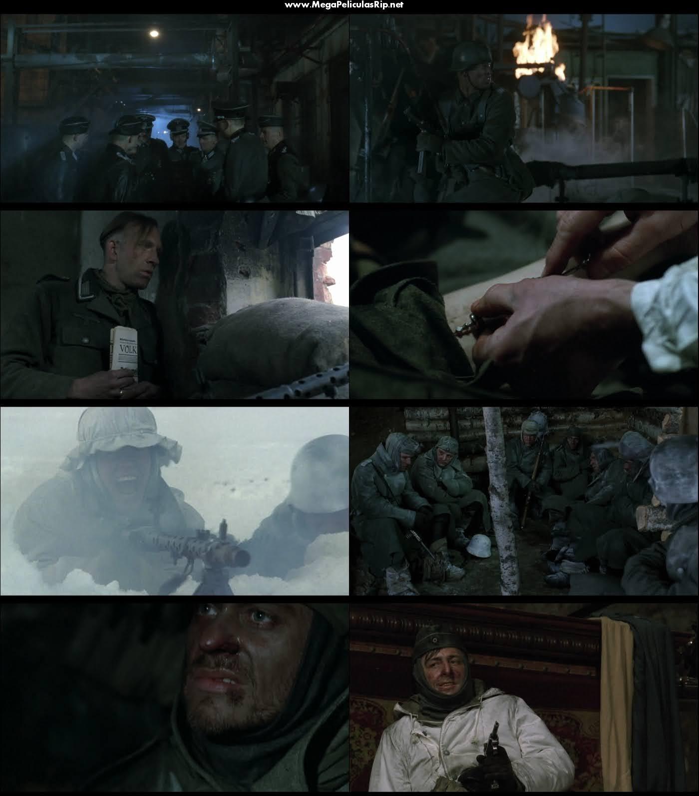 Stalingrado 1080p Latino