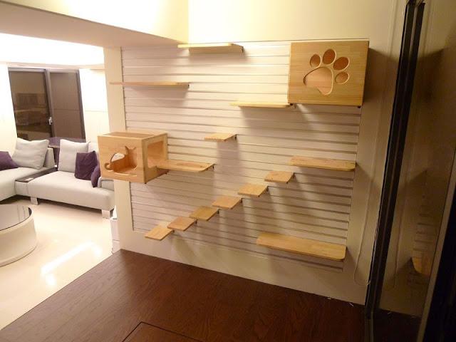 Feline-Friendly Modular Bookcase Design Feline-Friendly Modular Bookcase Design Feline Friendly 2BModular 2BBookcase 2BDesign