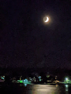 Crescent Moon Over Moose And Houses