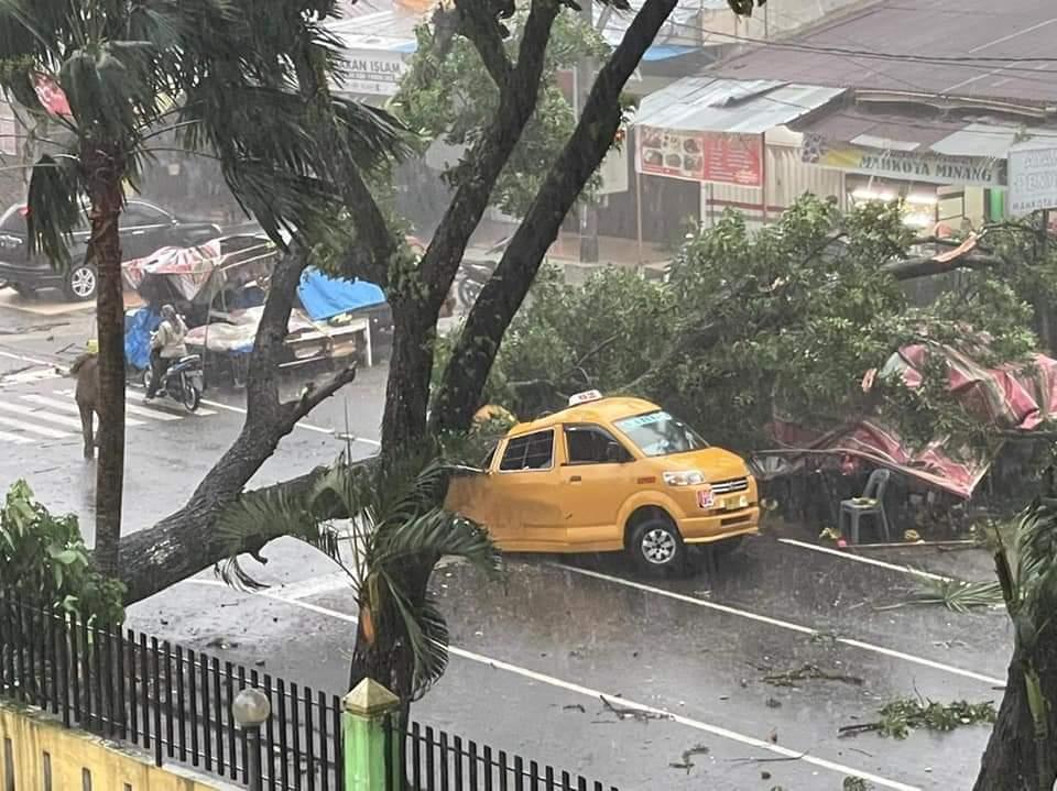 Pohon tumbang di rs adam malik