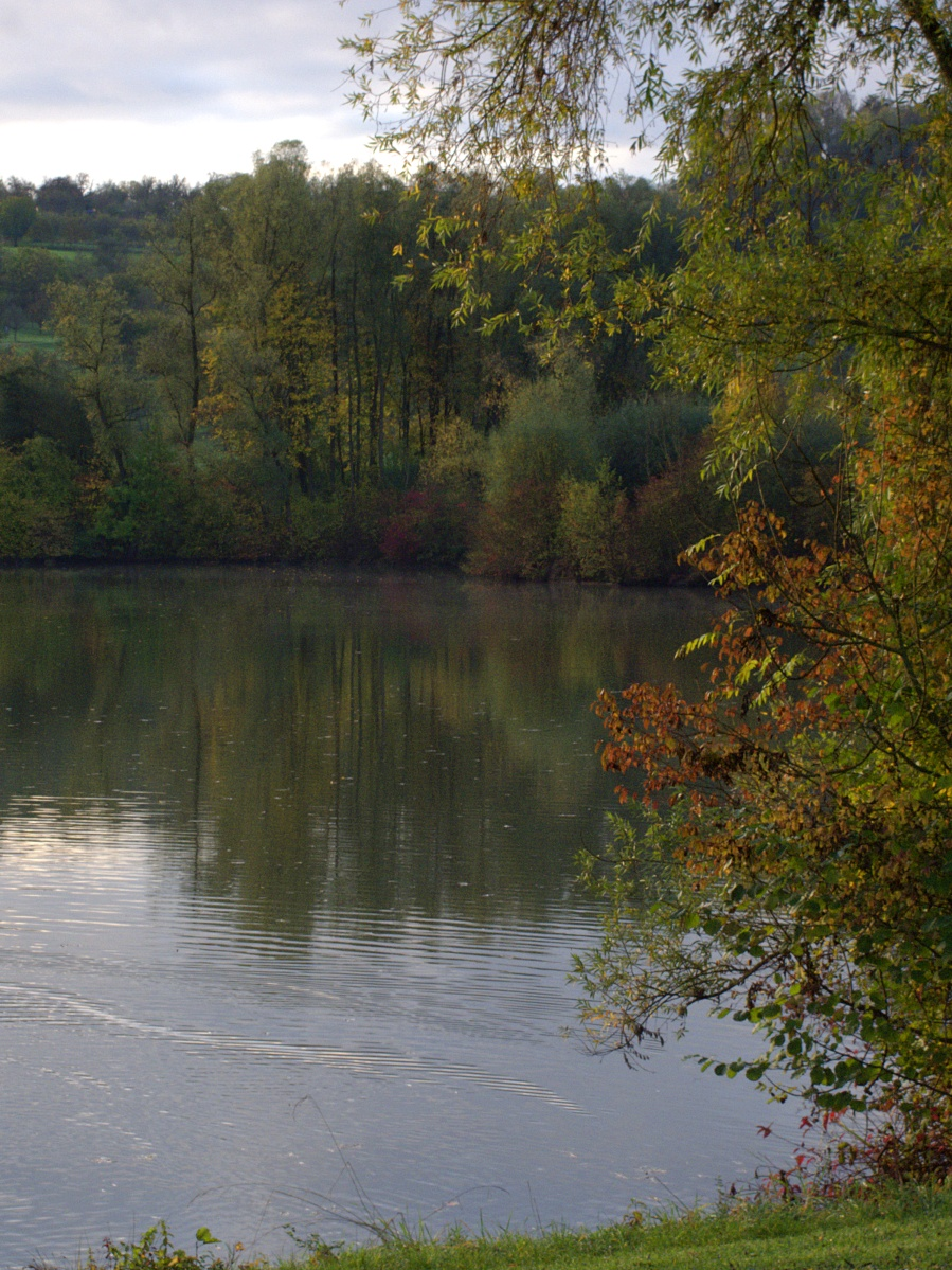 #297 Pentax 03 Toy Lens Telephoto f5.6 3.2mm – Herbstimpressionen am Aileswasensee (2)