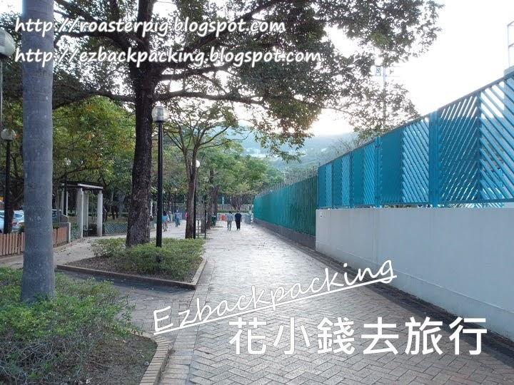 香港紅葉:將軍澳市區看楓香+楓香樹位置