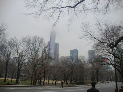 Central Park no inverno - New York