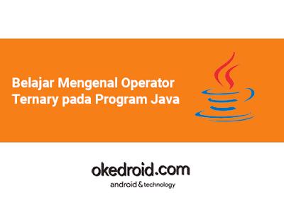 Belajar Mengenal Contoh Apa itu  Operator Ternary adalah pada Program Java