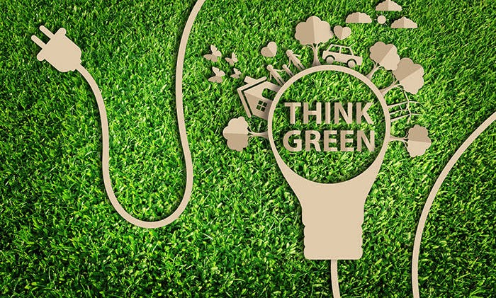 Tips for understanding 'green' lingo