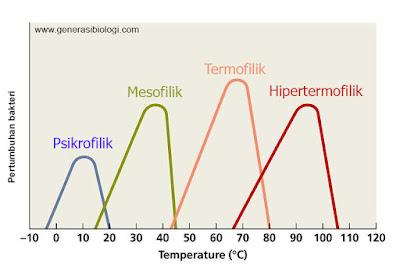bakteri psikrofilik mesofilik termofilik