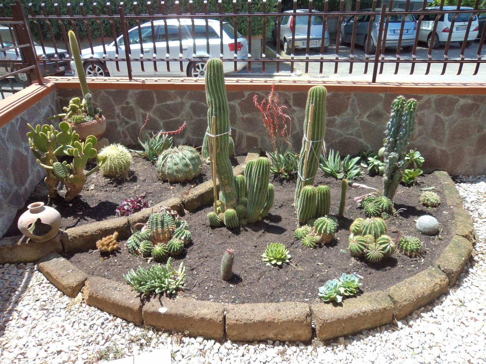 I giardini di carlo e letizia giardino di piante grasse for Abbellire giardino