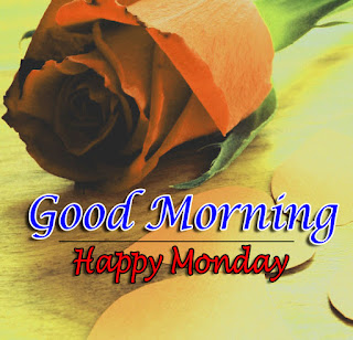 New Good Morning 4k Full HD Images Download For Daily%2B96