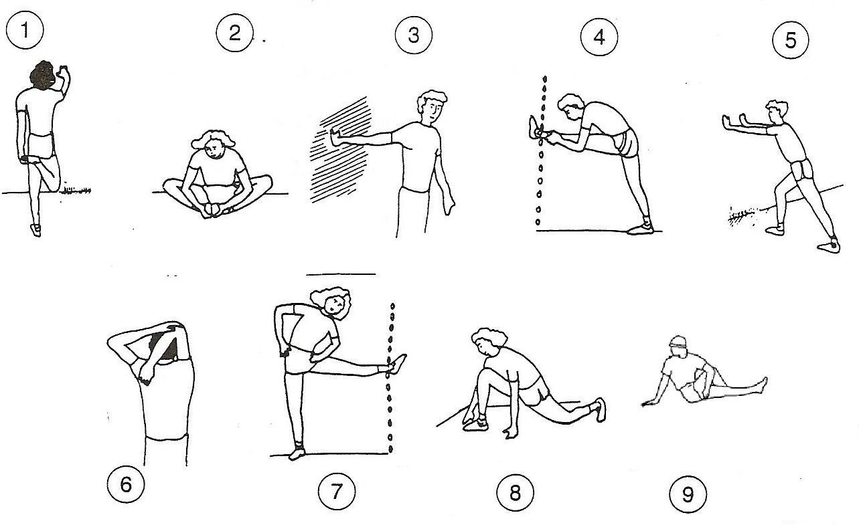 EDUCACIÓN FÍSICA TIRSO DE MOLINA: 3º CICLO: Bloque salud
