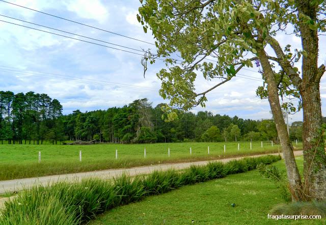 Paisagem rural da Colônia Witmarsum, Paraná