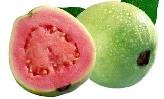 Jambu Sebagai Makanan Untuk Diabetes