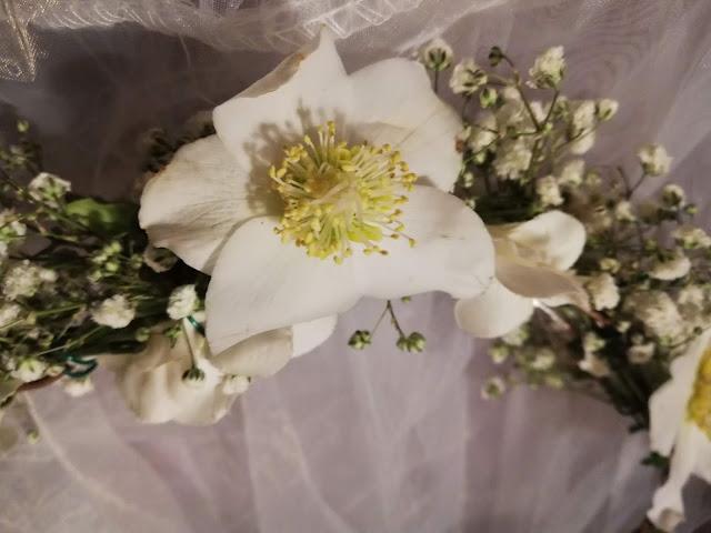 rose de Noël, couronne de mariée