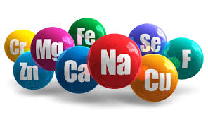 Is the human body composed of elements?