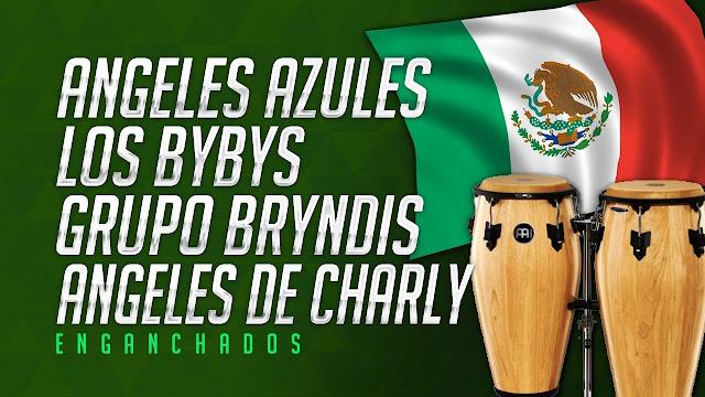 ANGELEZ AZULES,LOS BIBYS,BRINDYS,ANGELES DE CHARLY ENGANCHADOS