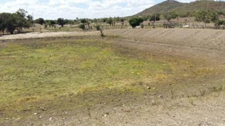 Governo federal reconhece Situação de Emergência dos municípios de Feira de Santana,  Paratinga,  Saúde e Utinga