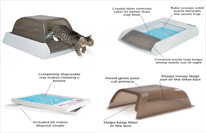 Cat Litter Box | Ultra Self-Cleaning