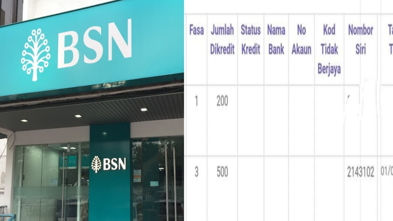 Semakan Nombor Siri BPN 2.0 dan Tarikh Penunaian Baucar Di BSN