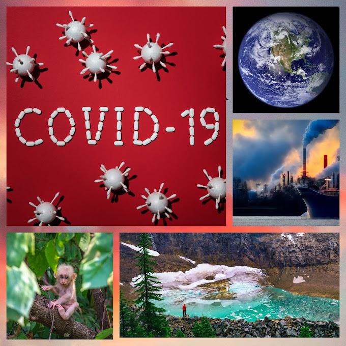 # कोरोनावायरस एक जैविक हथियार # कोविड-19 एक सच बरसों पहले इस महामारी की हो गई थी भविष्यवाणी.