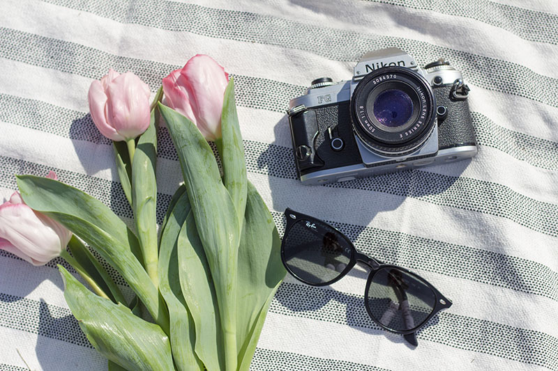 nikon film camera ray-ban sunglasses and pink tulips