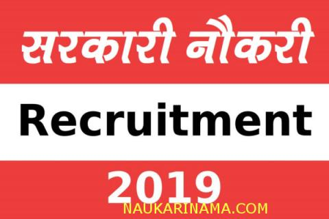 Bumpers Recruitments: Job digest is going on for the posts of Forest Chokers for 8 March 2019 -10th