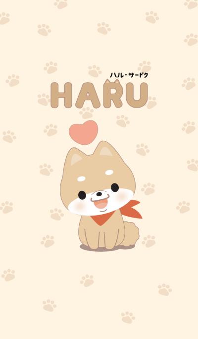 HARU The Dog