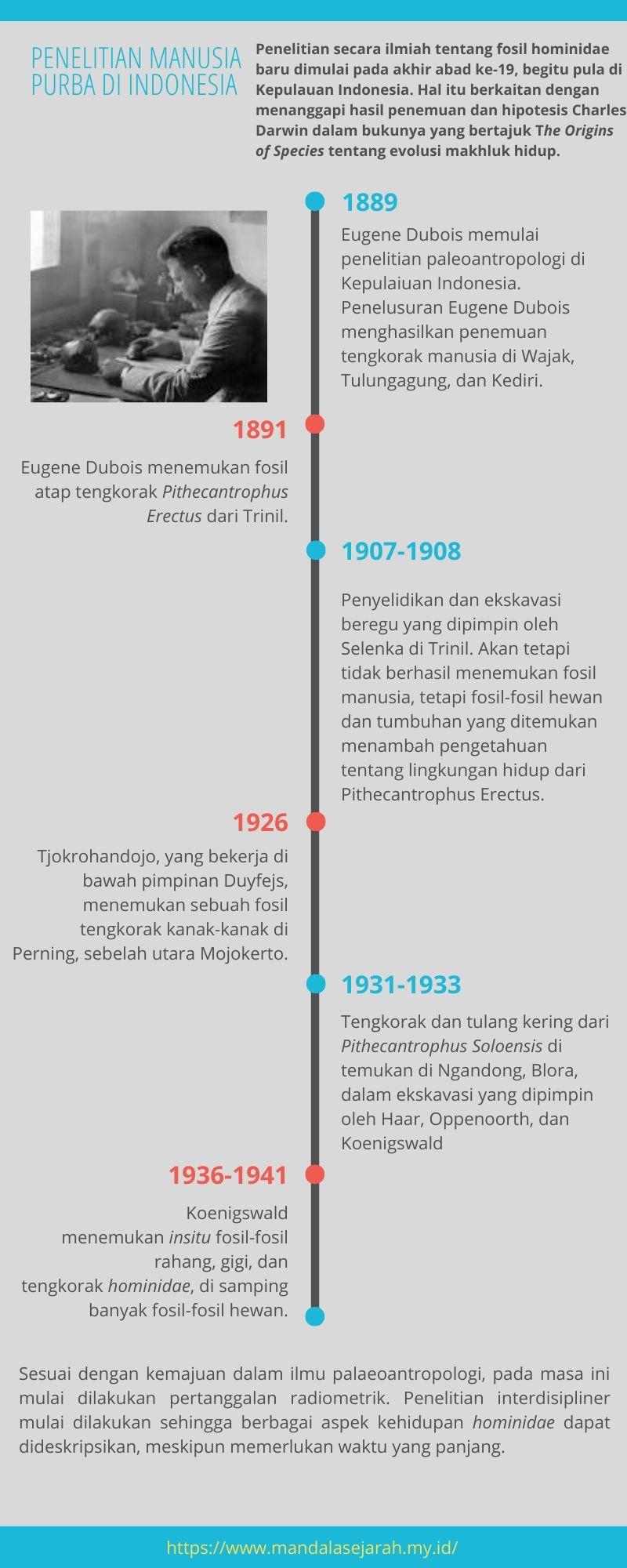 manusia purba di indonesia, manusia purba, penelitian manusia purba, apa itu manusi purba, jenis manusia purba, jenis jenis manusia purba