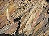 Un schiste est une roche qui a pour particularité d'avoir un aspect feuilleté, et de se débiter en plaques fines