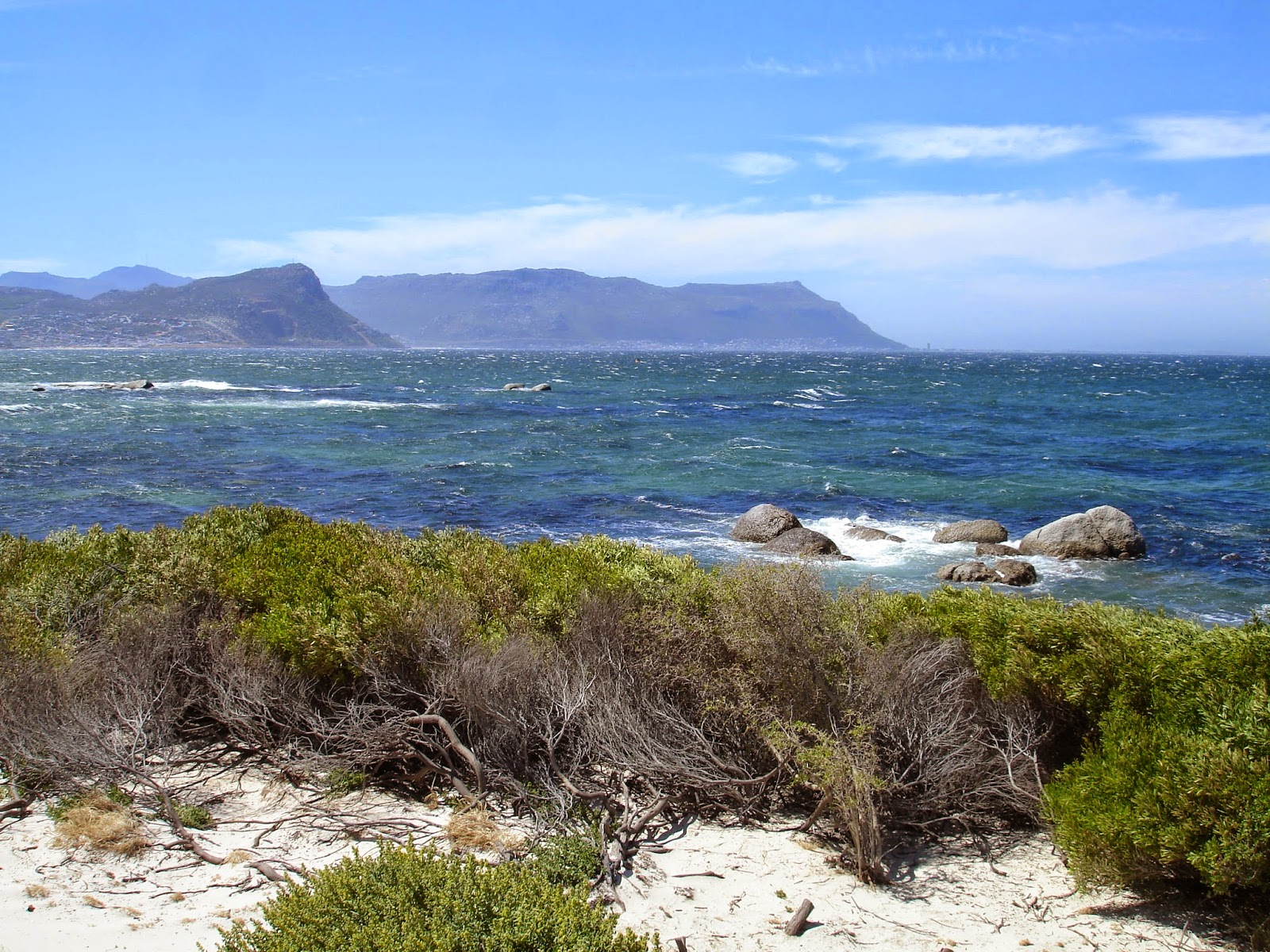 the boulders in simon s town false bay by the penguins