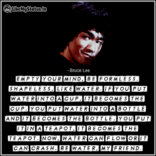 Bruce lee quote be watter