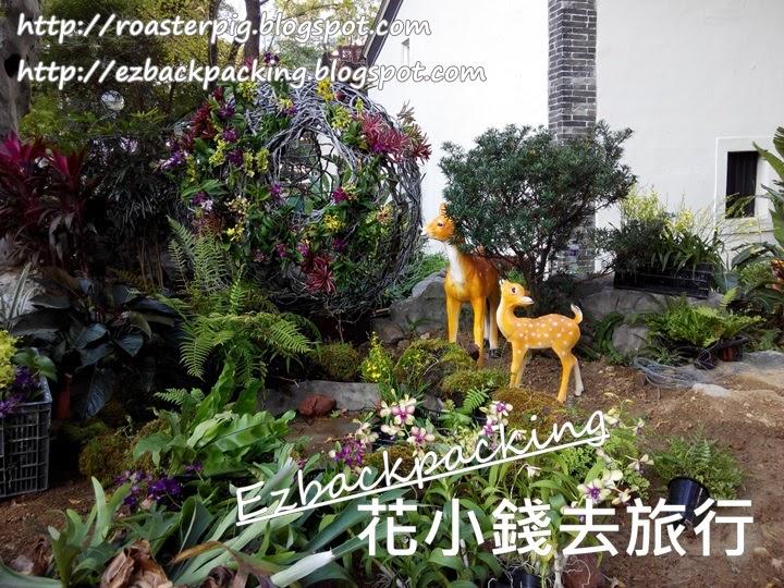 荃灣花卉展覽佈置
