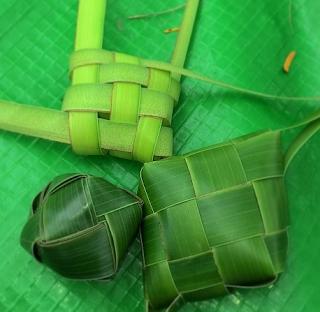 macam-macam dari daun kelapa