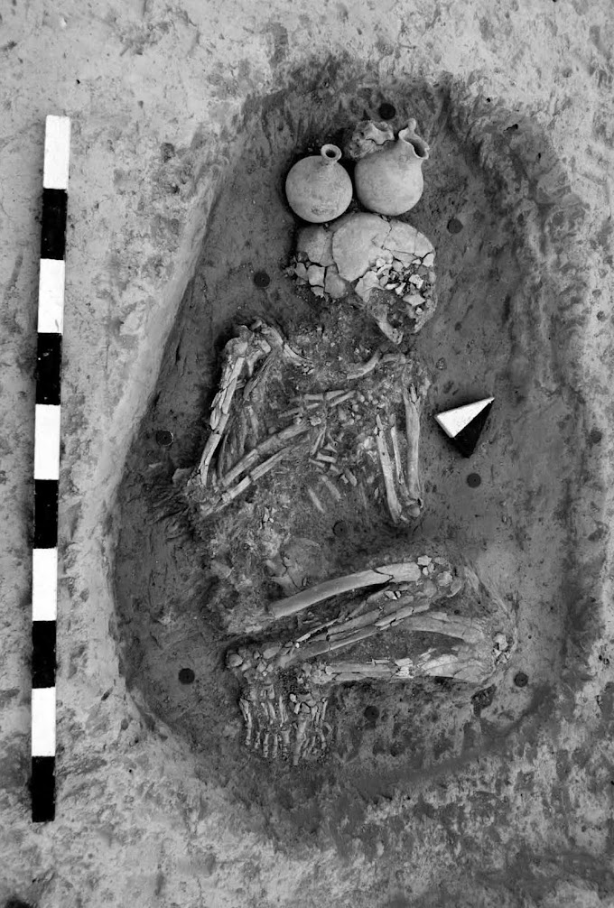 Researchers Use Genetic And Isotopic Data To Investigate Human Mobility At The Bronze Age City Of Alalakh