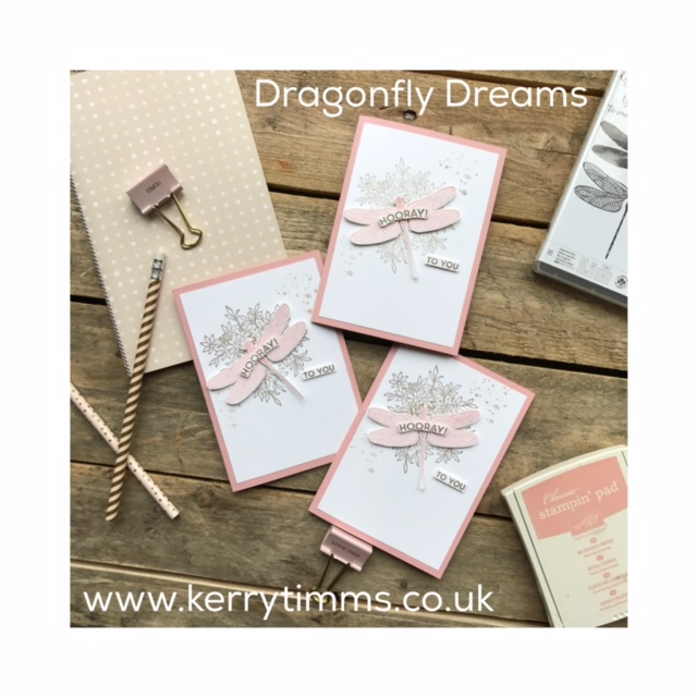 kerry timms stampin up dragonfly dreams stamps ink papercraft creative hobby female invitation handmade cardmaking scrapbooking craft