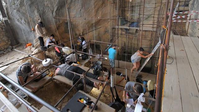 Volunteers find 560,000-year-old milk tooth in France