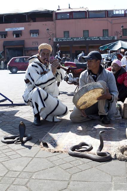 Incantatori di serpenti-Marrakech