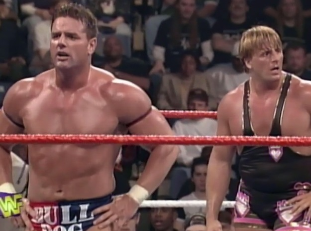 WWE - 28 Great WWF In Your House Matches - Owen Hart & British Bulldog