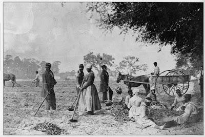 Grupo de esclavos trabajando en una plantación de Virginia