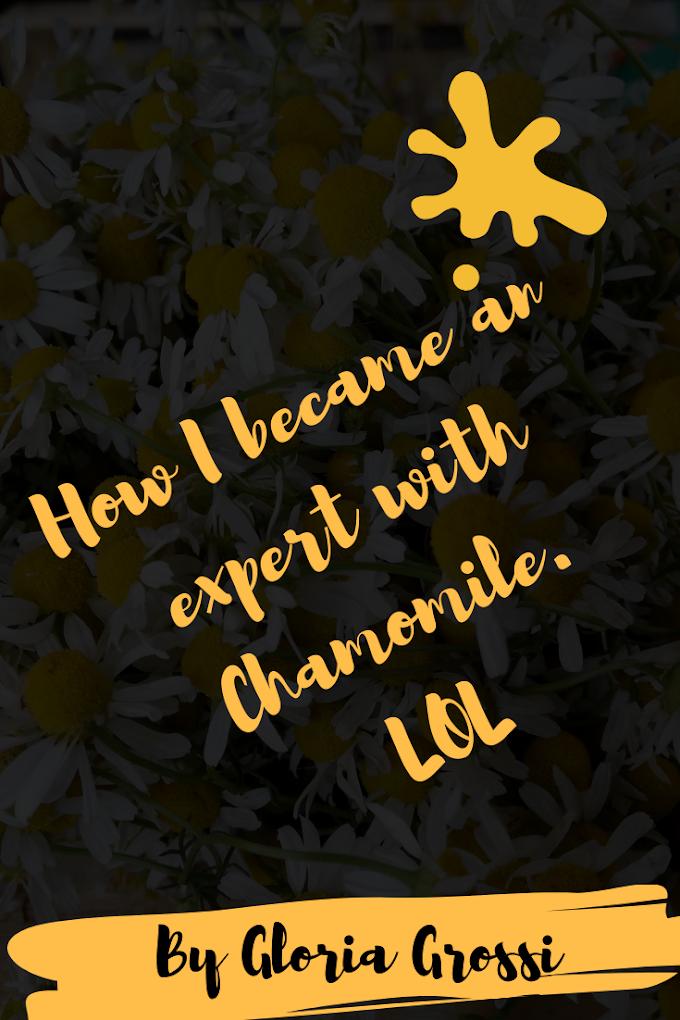 My Unfortunate Journey with Chamomile Plants.