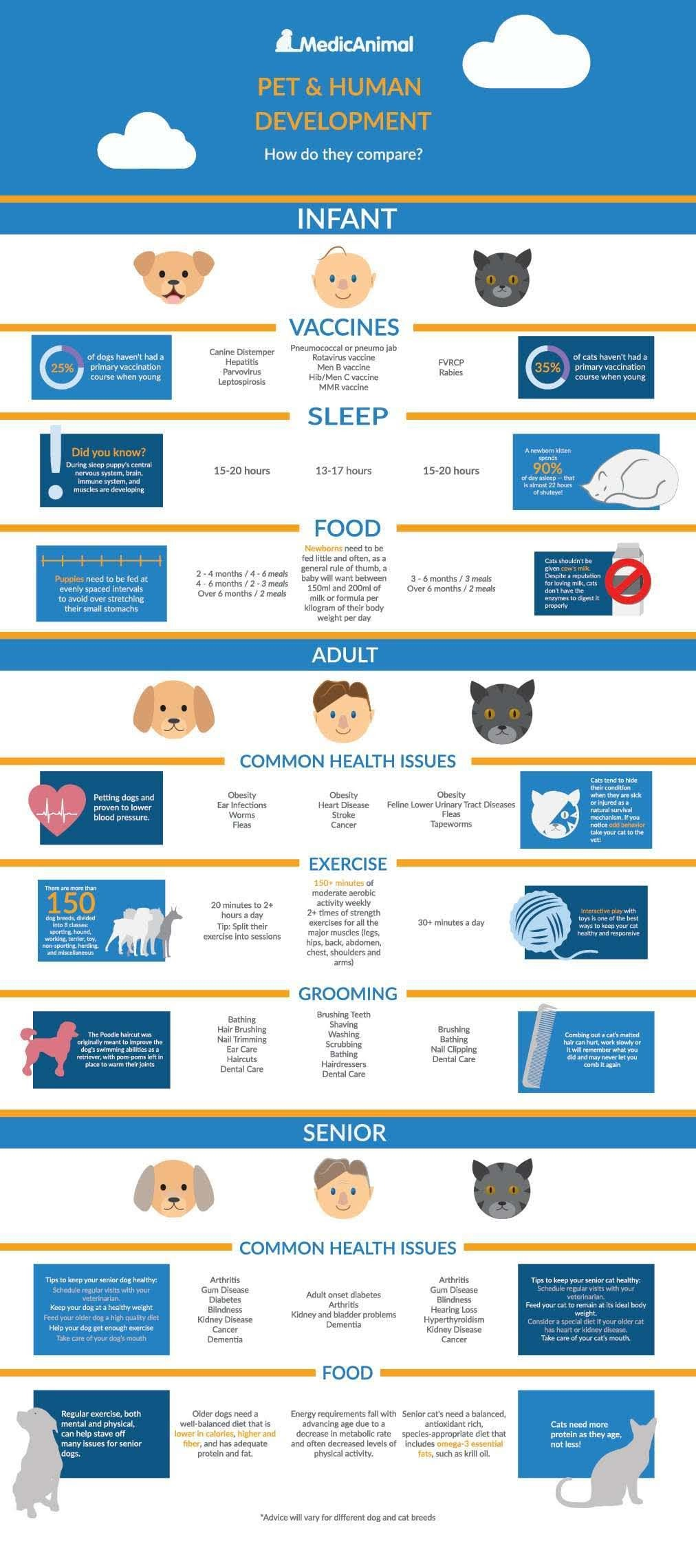 Pet and Human Development How Do They Compare #infographic